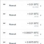 bitcoin-rendite-automatiche2